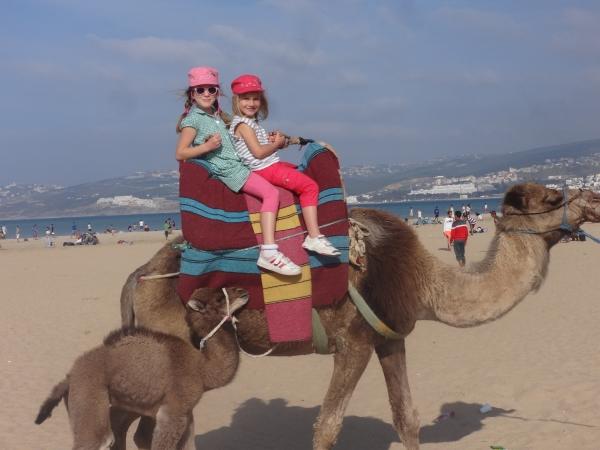 niñas montando en camello
