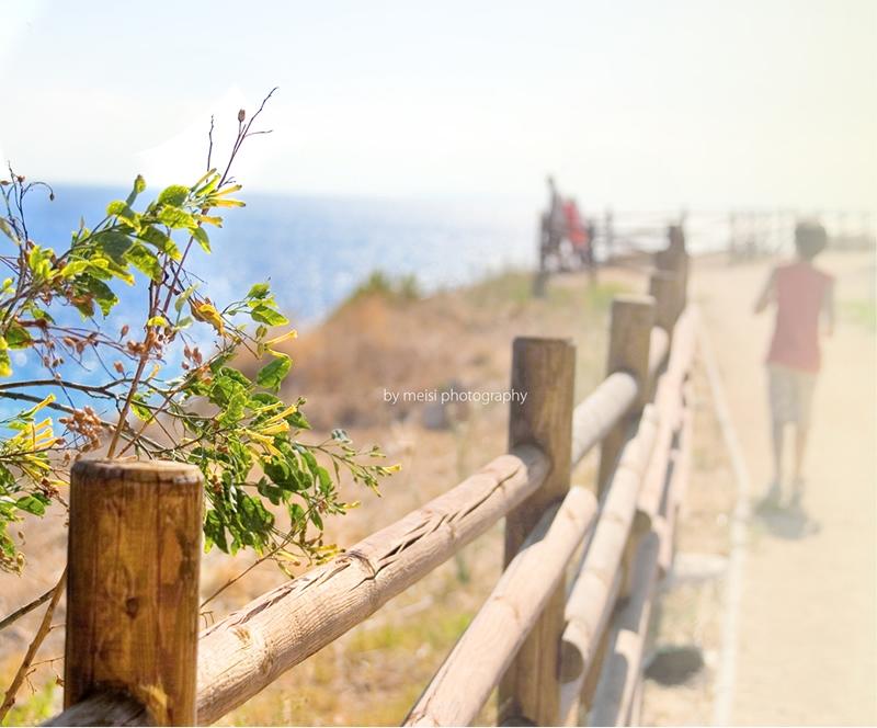 sea-fence_meisi